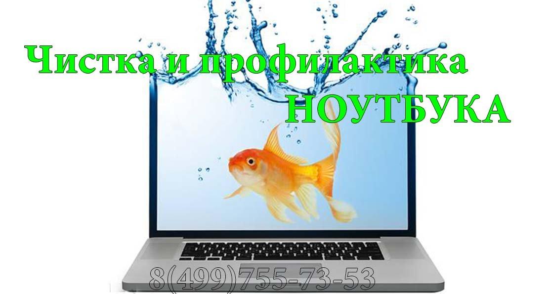 remont_noutbuka_c_ryboy_vtoraya_web